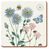 Coaster - Kew Meadow Bugs