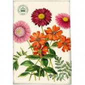 Prosop bucatarie - Painted Daisy Tea Towel